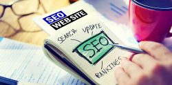 vincente strategia SEO